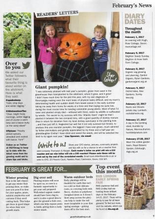 giant-pumpkin-kitchen-garden